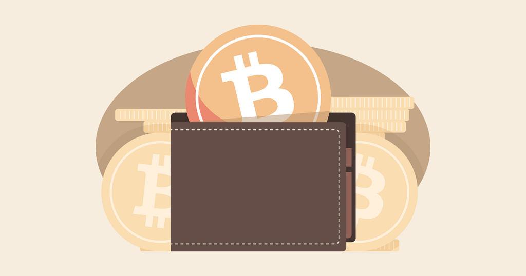 ¿Qué es una billetera Bitcoin? Tipos de monederos y wallets sugeridas