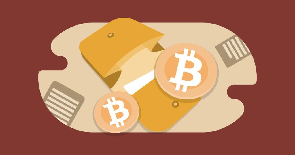 Mejores monederos de criptomonedas: ¿Cuál debo escoger?