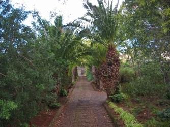 Madeira_08
