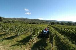 Italie_2011-36
