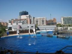 Valencia_15