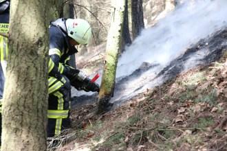Flächenbrand bei Waldböckelheim
