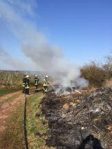 Flächenbrand bei Wallhausen