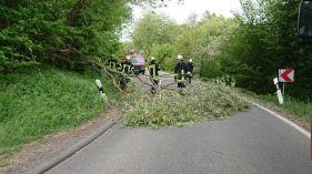 Sturmschaden bei Hergenfeld