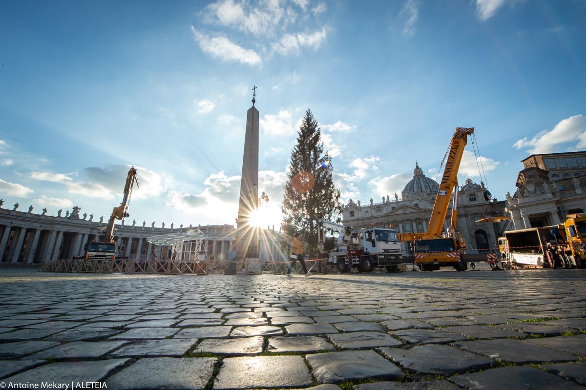 Un immense sapin de Noël sur la place Saint-Pierre