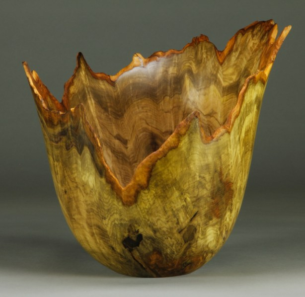 "#67. Jones Tulip Poplar Burl 11"" dia. x 11"" tall"