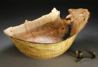 """A 13. Silver Maple with embeded nail and ring 14"""" x 10"""" dia. x"""