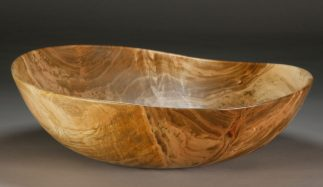 """R 1. Red Maple. 13 1/2"""" dia. x 4"""" tall ... $180 ... $145"""