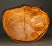 """SOLD A 30 b Ornamental Cherry Grafted Stock .. 16"""" x 14 1/4"""" dial x 9"""" tall $1250"""