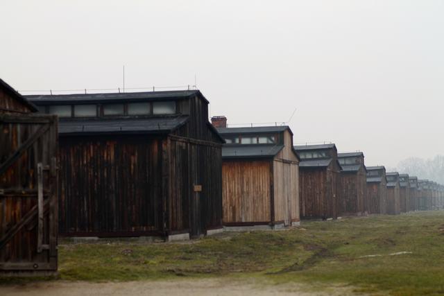Auschwitz2015_14