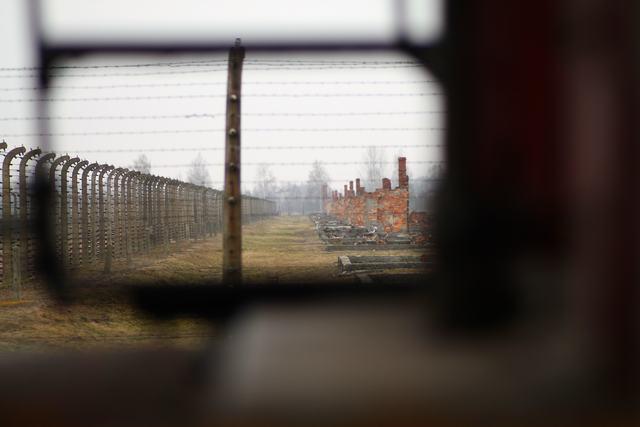 Auschwitz2015_15