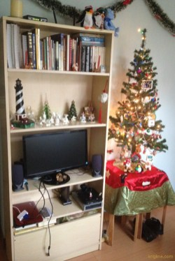 Here's our new bookcase (a gift from Crossroads) and our little Christmas tree; we gave away our nice, big tree because we didn't have anyplace in this little apartment to store it year round!