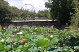"We also saw many ""western"" friends, and even got to enjoy a picnic at this lovely park in Kunming."