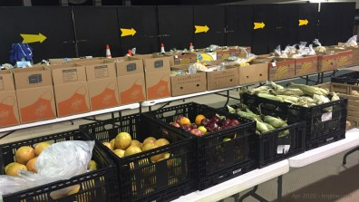 On Saturdays, I help process food to be distributed through CLC's food bank.