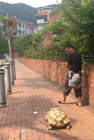 "Near Martha's home, I saw this man walking his turtle! I've met others who raise exotic tortoises, but I'd not seen one this big, nor had I seen one ""being walked."" One never knows what you'll run into in Hong Kong!"