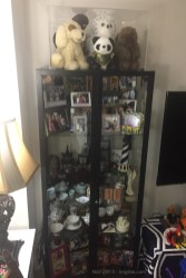 We finally got around to filling our Ikea display cases. This one has puppets on top, family photos, and many curios from our years in China.