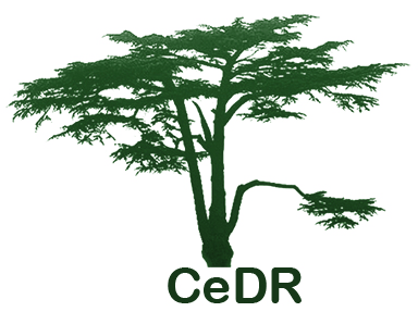 Centre for Disability Research (CeDR)