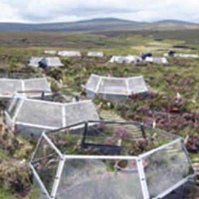 Plant-climate interactive feedbacks to peatland methane dynamics 400 x 400 px