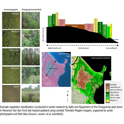 Remote sensing investigation of how oil palm cultivation is degrading Malaysia's tropical peatland ecosystem services 400 x 400 px