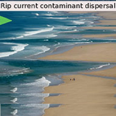 Rip current and density driven dispersal of nearshore contaminants