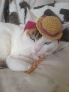 ちよびNewお帽子