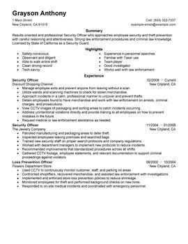 Impactful Professional Law Enforcement & Security Resume Examples
