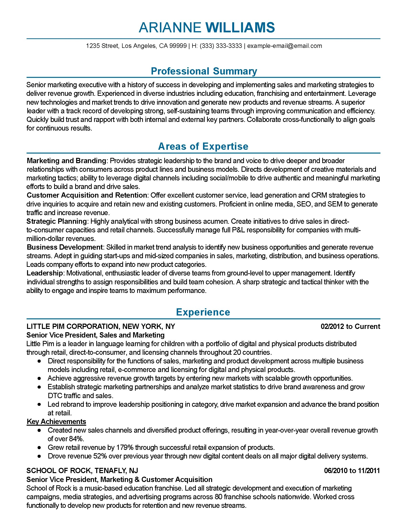 Summary For Marketing Resume Professional Senior Marketing Executive Templates To
