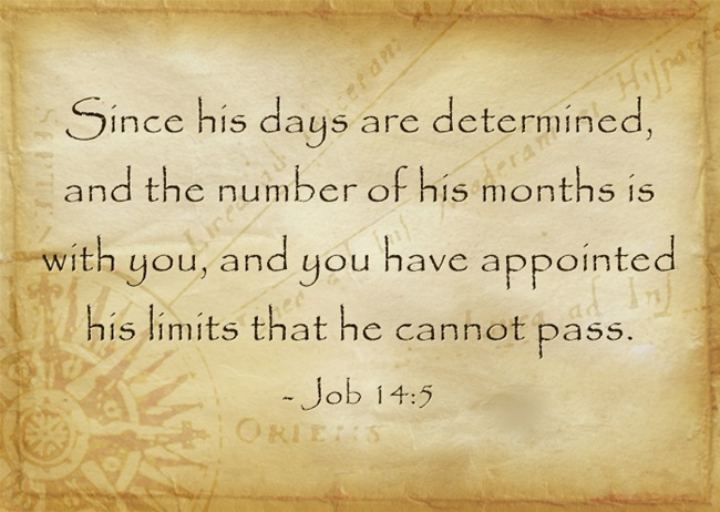 Image result for count our days scripture