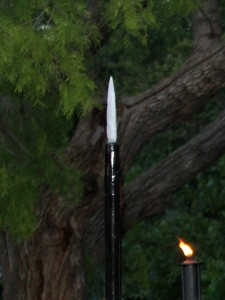 spear in tree