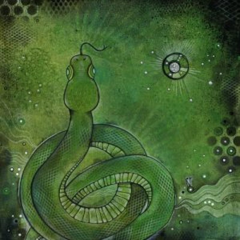 Serpent - Slytherin