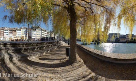 Golden leaves in Thun – Rundum Herbstzauber
