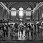 2017-49: NYC Grand Central Terminal Flashmob