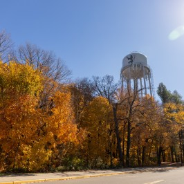 Fall colored trees below the St. Olaf water tower