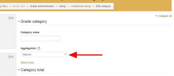 """Screenshot of online gradebook category settings with arrow pointing to """"aggregation"""" drop down menu"""
