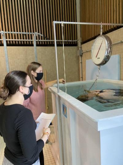 Tori Salaba and Gina David working with the hydrostatic weighing tank