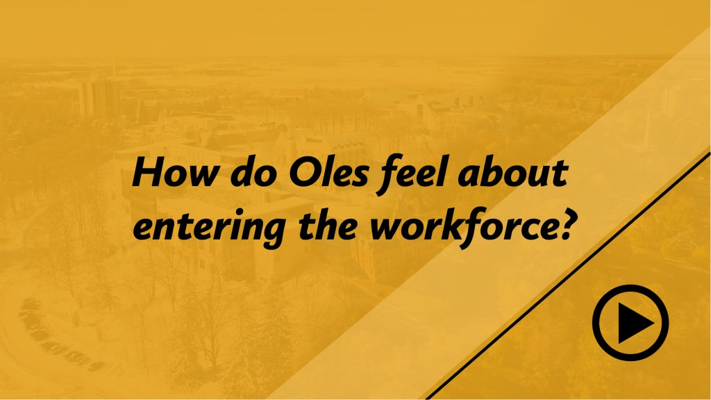 How do Oles feel about entering the workforce?