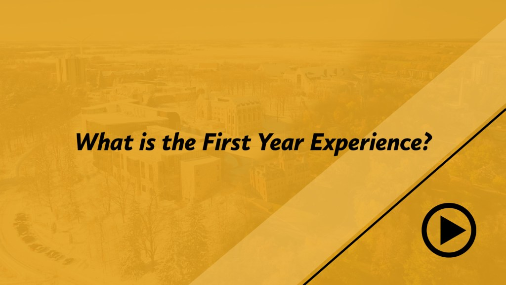 What is the First Year Experience?