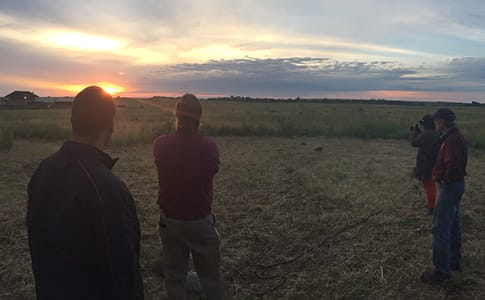 Group takes observations at sunrise.