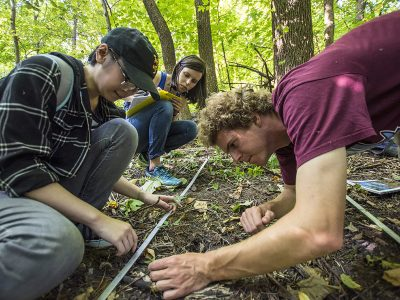 Students work in the Natural Lands.