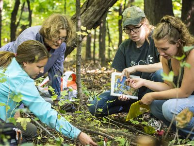 Curator of Natural Lands and Professor of Biology and Environmental Studies Kathy Shea works with students in the Natural Lands.