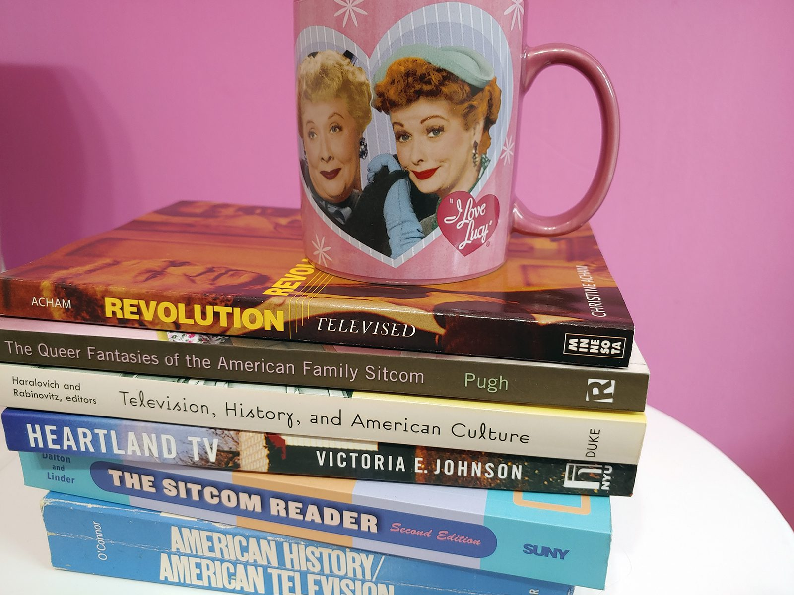 A pile of books that Professor of History Judy Kutulas is using to inform her own writing about sitcoms.