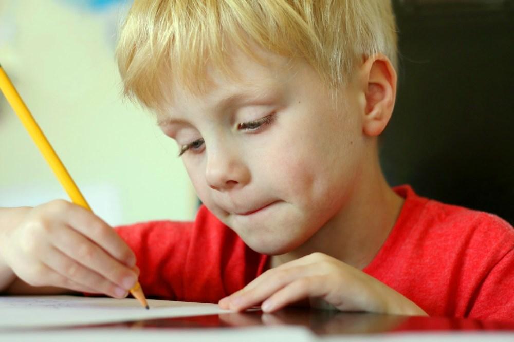 medium resolution of Making Grammar Fun Through Simple Sentence Worksheets   Turtle Diary