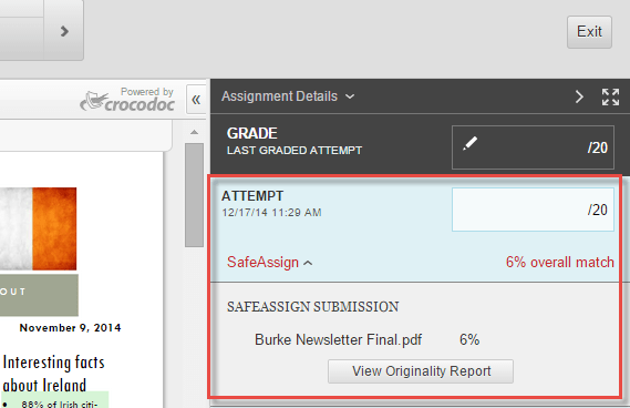 SafeAssign Report in In Line Grading