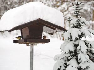Futterhaus im Winter, © H.D.Volz / Pixelio.de