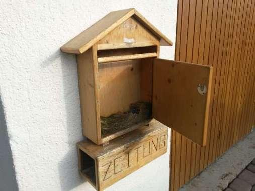Ein Meisenpaar hat aus der Not eine Tugend gemacht und sein Nest in einem Briefkasten gebaut, © Lars Witte