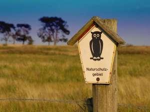 Naturschutzgebiet, © KRiemer / Pixabay