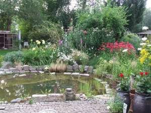 Ein Teich ist ein für viele Wildtiere wichtiger Bestandteil eines naturnahen Gartens, © Simone Stapelberg