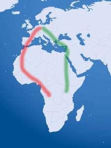 Viele europäische Zugvögel wählen die West- oder Ostroute, © Gaby Schulemann-Maier basierend auf einer Globus-Vektorgrafik von ClkerFreeVectorImages / Pixabay