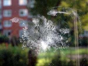 An dieser Fensterscheibe sind deutliche Federstaubspuren einer Taube zu erkennen, die mit dem Kopf voran gegen das Glas geprallt ist, © Rüdiger Jacob