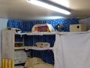 Mit Tüchern geschützte Wände und Sitzmöglichkeiten im Schwalbenzimmer, © N.K und T.K.